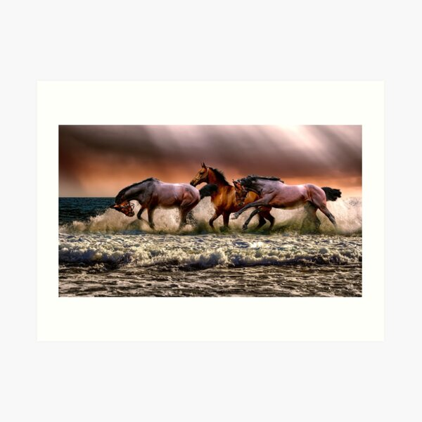 Wild horses on the river Art Print