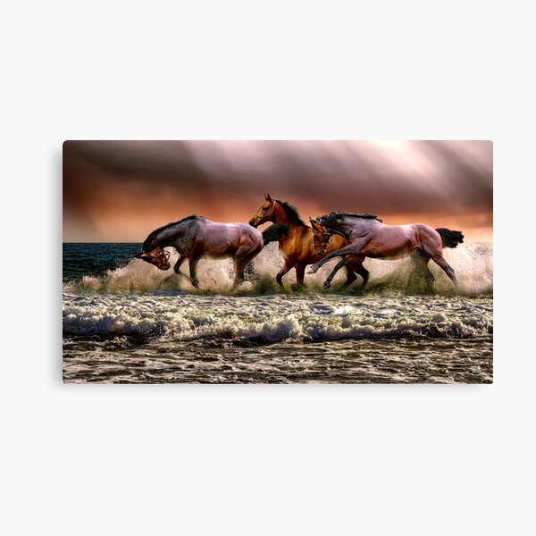 Wild horses on the river Canvas Print