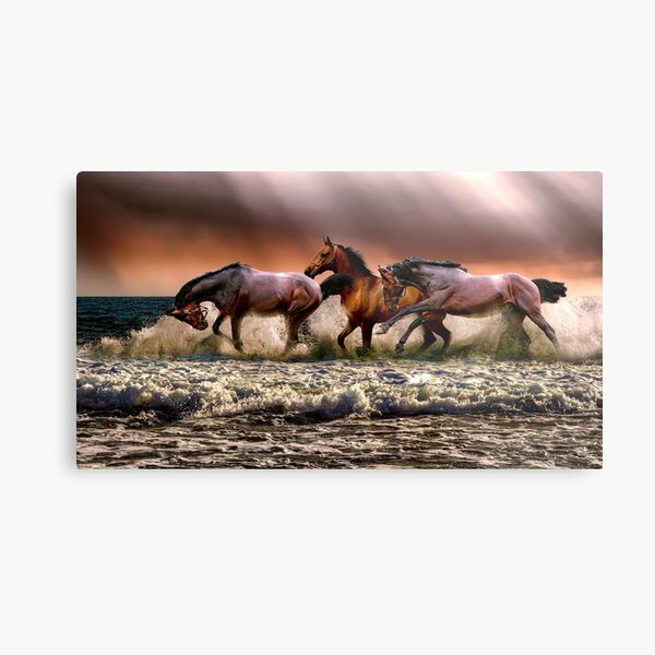 Wild horses on the river Metal Print