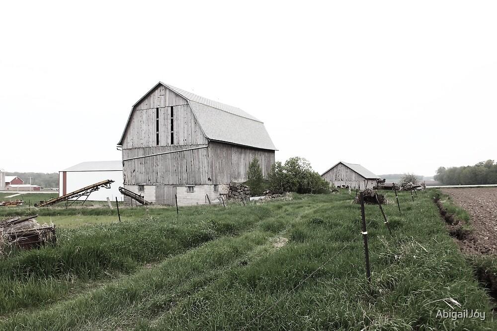 Old Farm by AbigailJoy