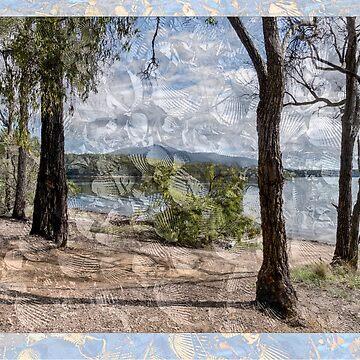Midden Wallaga Lake NSW 2546 Australia by pcbermagui