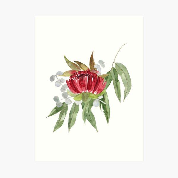 Australian Native Bush Watercolour Art Print