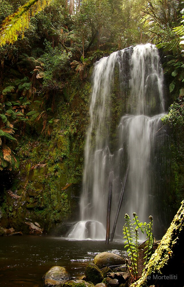 Beauchamp Falls Otways by Joe Mortelliti