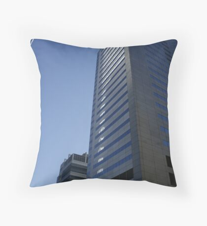 Reflextion Throw Pillow