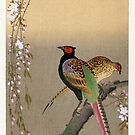 Pheasants and Cherry Blossoms by Koson by Ruth Moratz