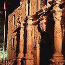 The Alamo by Tokay