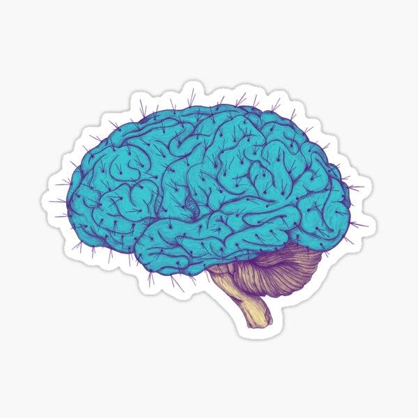 Succulent Mind Sticker