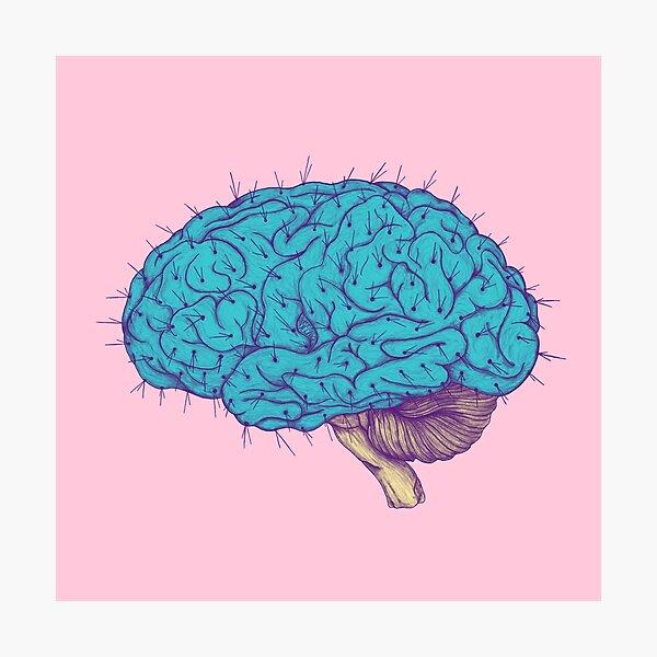 Succulent Mind Photographic Print