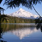 Mt Hood Reflecting in Lost Lake by Ran Richards