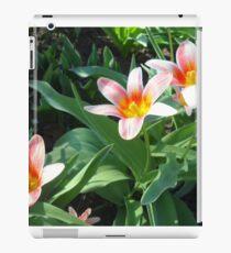Tulips Tulips iPad Case/Skin