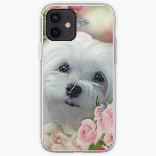 Snowdrop the Maltese - The Face that Melts my Heart iPhone Soft Case