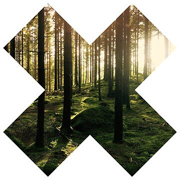 X theme - Forest by Oxshop