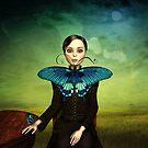 Schmetterlingsportrait auf der Wiese von Britta Glodde