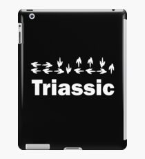 Dinotopia Inspired Triassic Text iPad Case/Skin