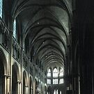 New Nave C14 Saint-Cyr-et-Sainte-Julitte-de-Nevers Cathedral Nevers France 19840828 0018 by Fred Mitchell