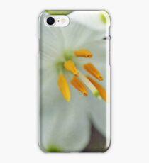 Galanthus nivalis 'Viridapice' iPhone Case/Skin