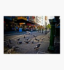 The Urban Environment Photographic Print