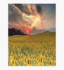 SUNFLOWERS Pop Art Photographic Print
