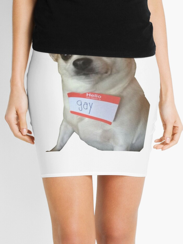 Hello My Name Is Gay Mini Skirt By Lukesorber56 Redbubble