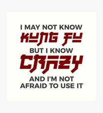 Crazy Kung Fu Funny Martial Arts Dare Art Print