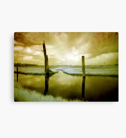 The World I Know Canvas Print