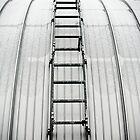 Ladder Abstract by Alexandra Lavizzari