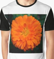Orange Spray Graphic T-Shirt