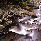 Moving water on Stinson Brook  by Wayne King