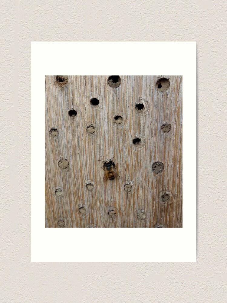 Alternate view of Solitary Bee Art Print