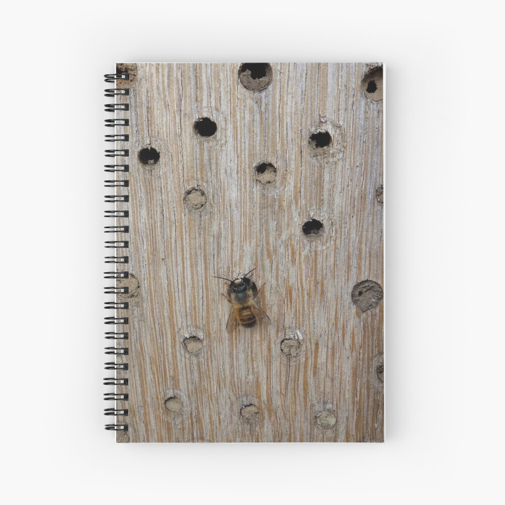 Solitary Bee Spiral Notebook