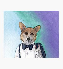 Pembroke Welsh Corgi dog in tuxedo Photographic Print