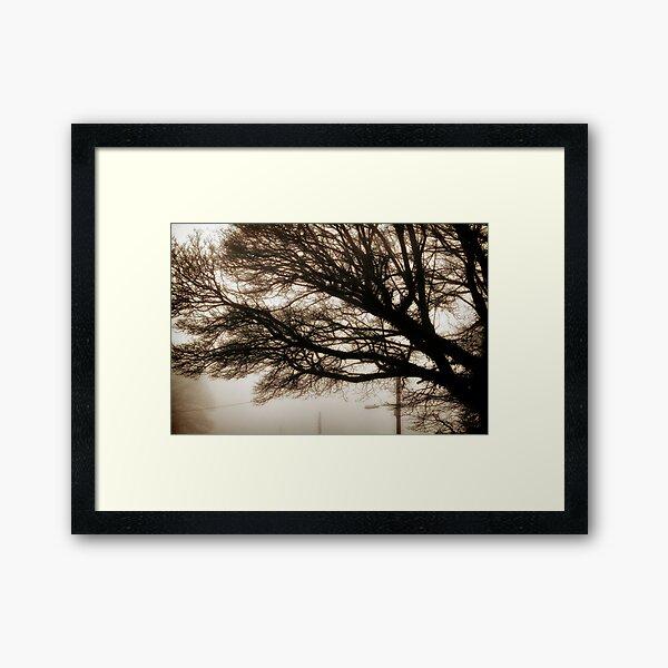 Morning Fog with Tree Framed Art Print