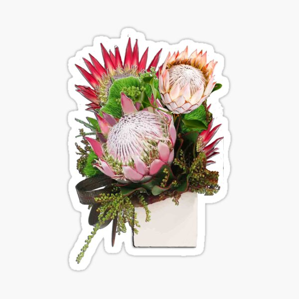 The King Protea Sticker