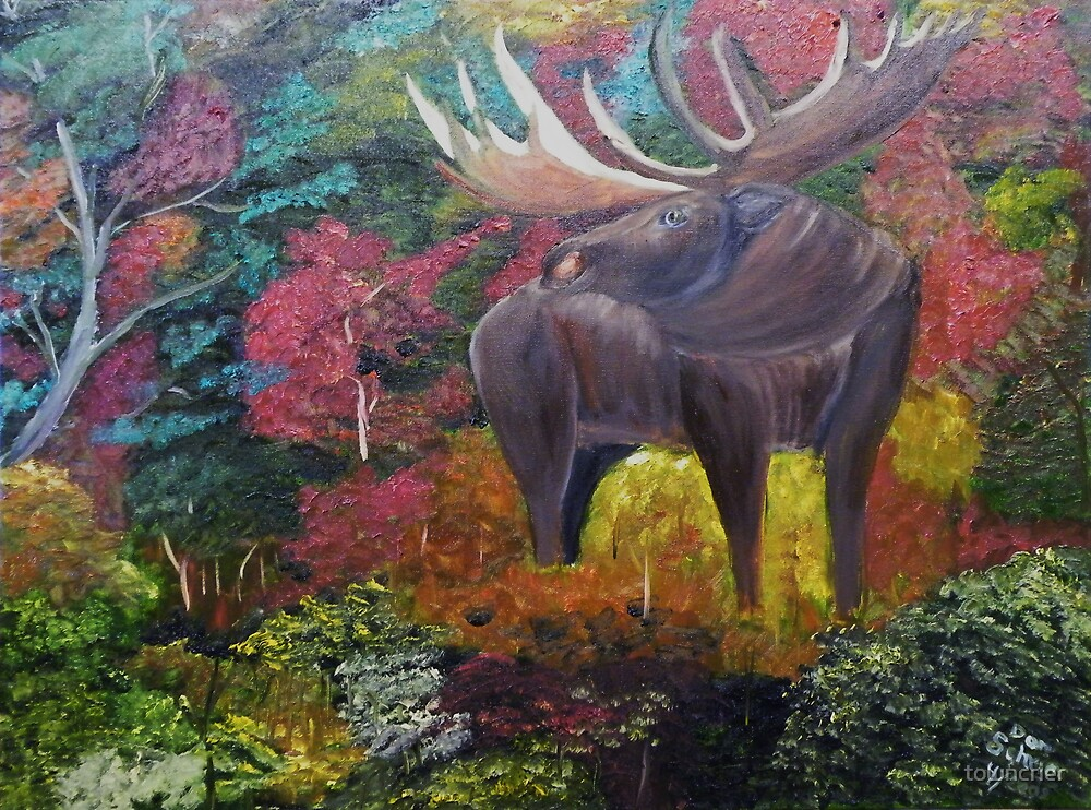 Bull Moose in Fall by towncrier