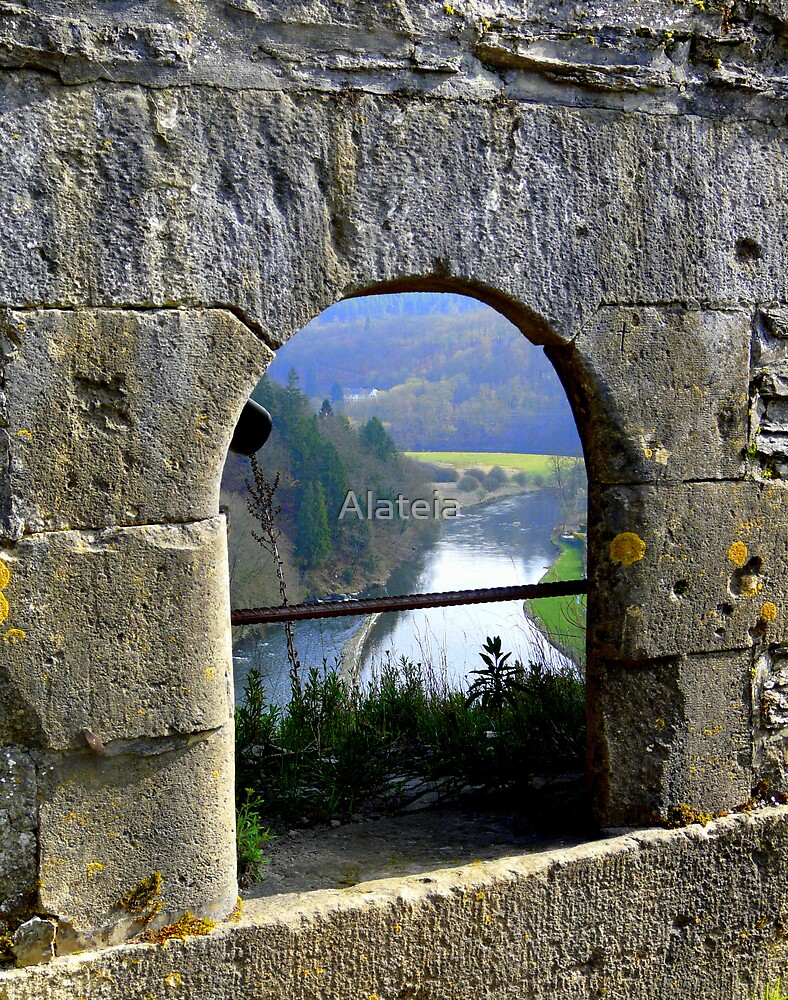 BOUILLON SURROUNDS by Alateia