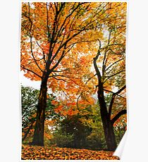 Fall - Beautiful couple Poster