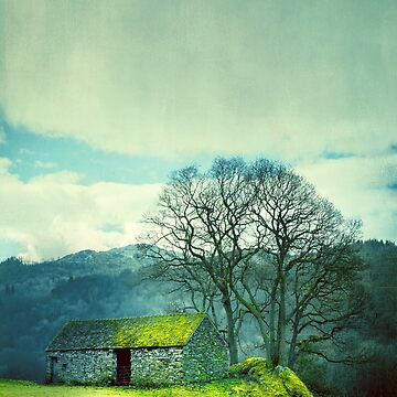 Green Hill by Lanas