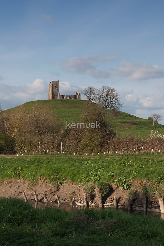 Burrow Mump by kernuak