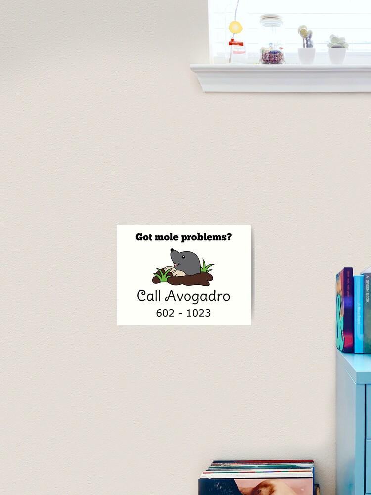 Mole Problems Call Avogadro Art Print By Ilexdesigns Redbubble