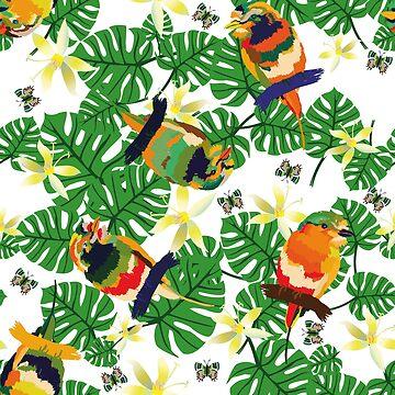 Pajaritos Tropicales by Sotola