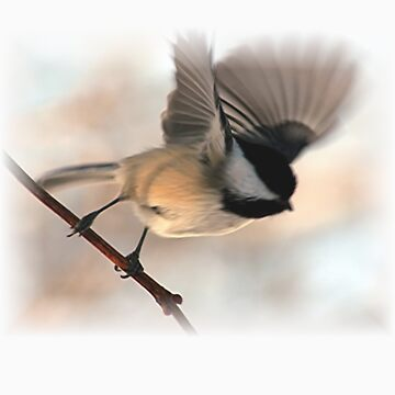 I'll Fly Away T-Shirt by stephenralph
