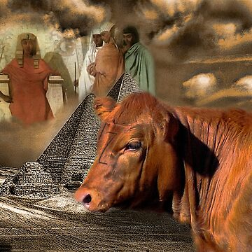 PHAROAH'S DREAM..GENESIS 41:1-36-DREAM OF THE 7 COWS-WE ARE IN THE YEAR OF THE SHEMITAH-BIBLICAL WARNING-TWO CALFS BORN WITH THE NUMBER 7..COINCIDENCE?? I THINK NOT!! by Rapture777