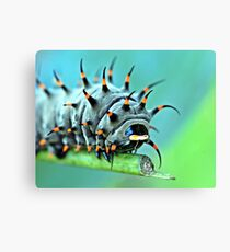 Creepy Crawly Canvas Print