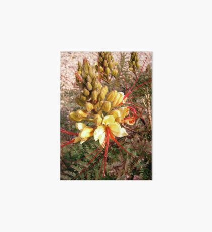 Yellow and Red flower Art Board