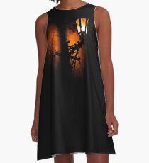 Lantern, its light and shadow A-Line Dress