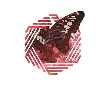 red butterfly by OutwestMedia