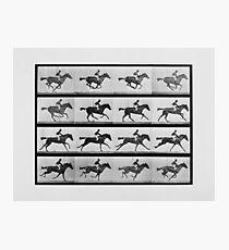Animal Locomotion - 16 Rahmen von Rennpferd Annie G. Fotodruck