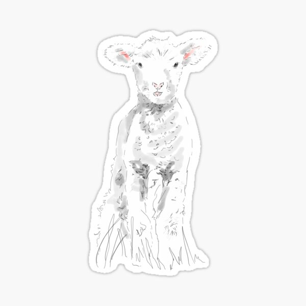 Vincent my 1st Lamb  Sticker