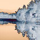 Lake Hayward by TingyWende