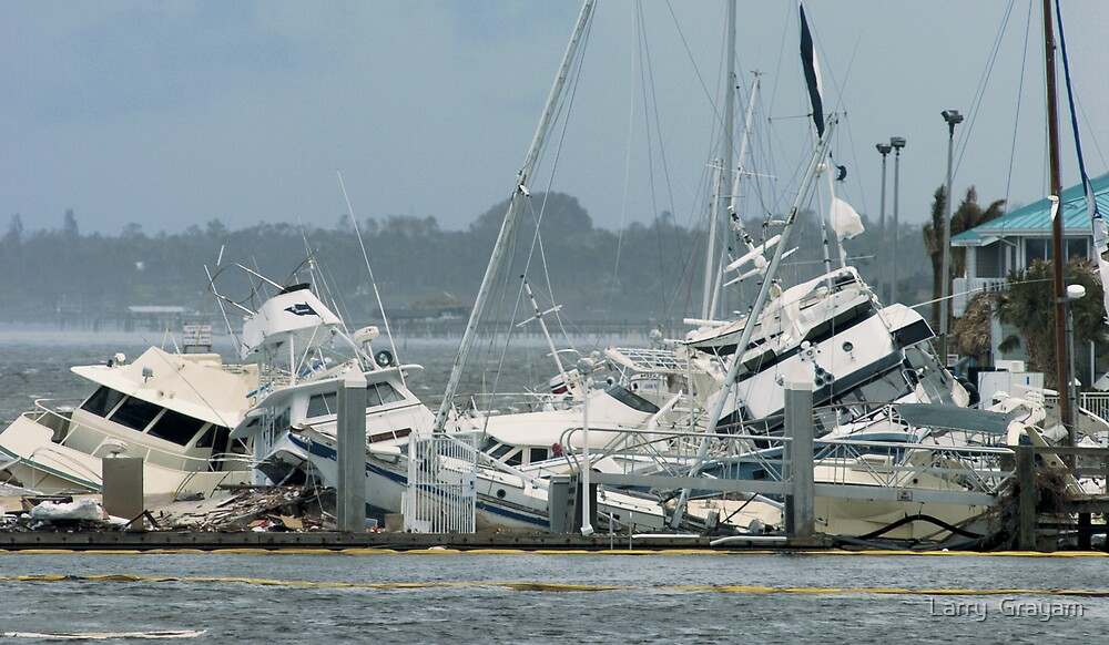 Aftermath of hurricane by Larry  Grayam